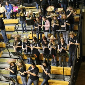 DCHS band shows growth