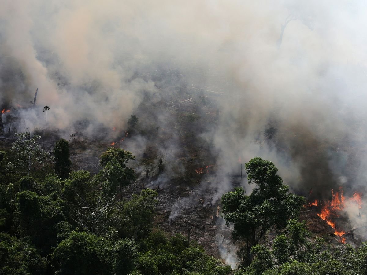 The fires have been set to clear the way for farmers so they can plant seed to use the land as farmland.