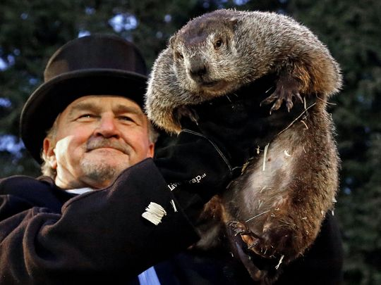Evolution of Groundhog Day