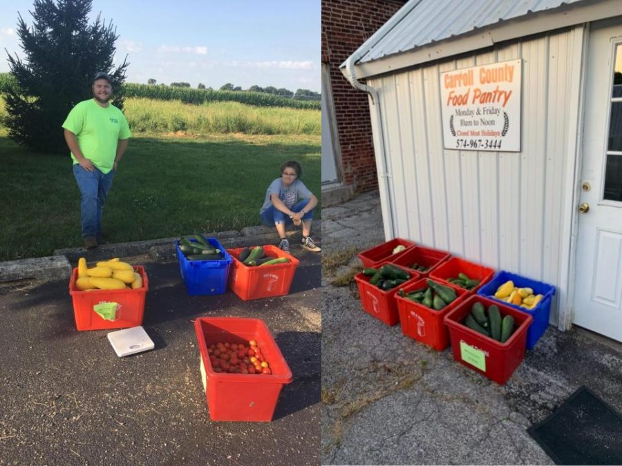 The FFAs community garden has produced plenty of food for the Carroll County Food Pantry.