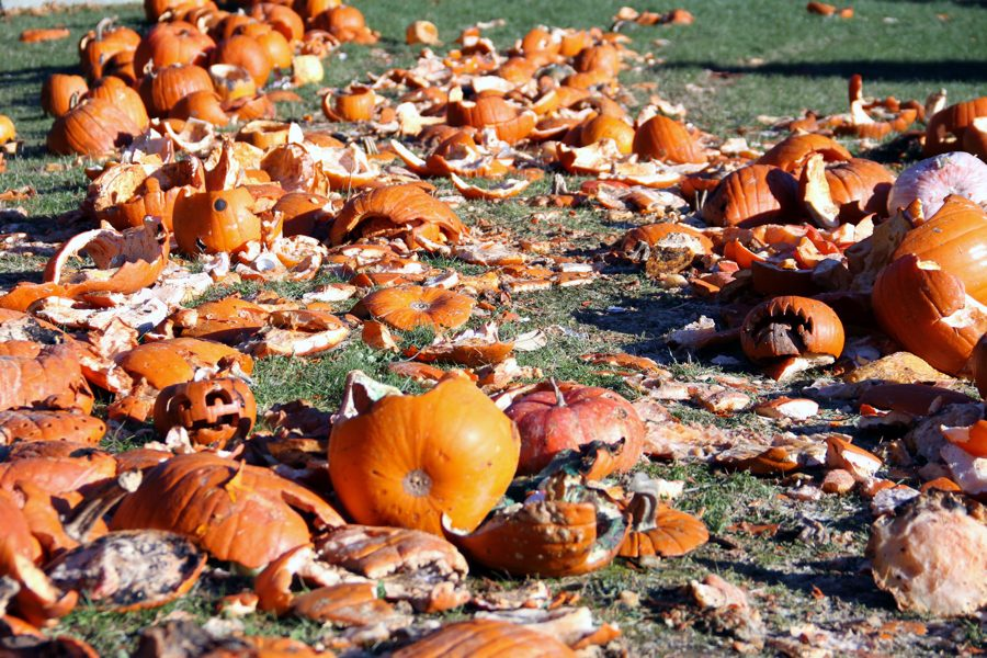 The mangled attempts to carve a pumpkin here are shown. Thousand of pumpkins are wasted simply because people suck at carving them.