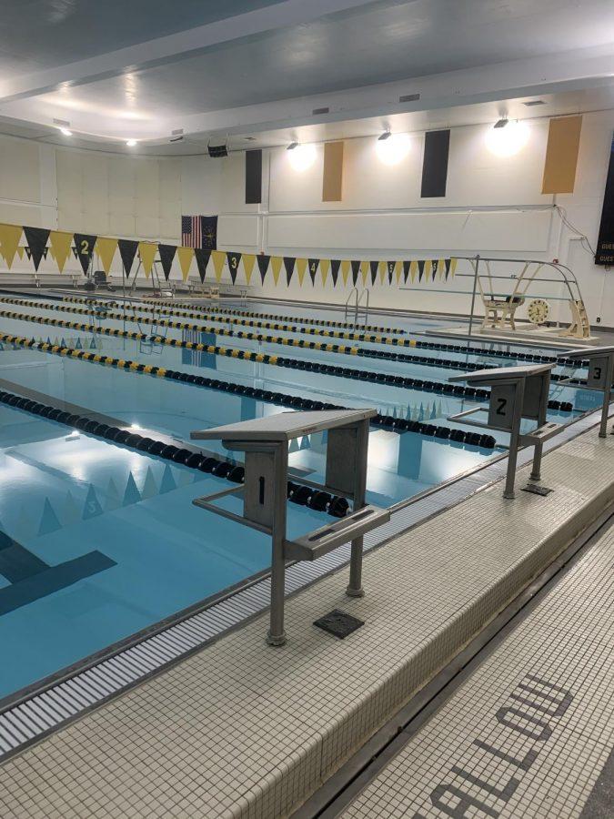 Senior Spotlight: Swim Season
