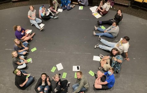Cast chosen for fall play Diary of a Wallflower